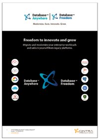 Database Anywhere - Freedom Flyer cover